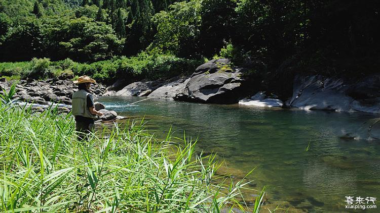 夏季早晚钓鱼,哪些位置不能选